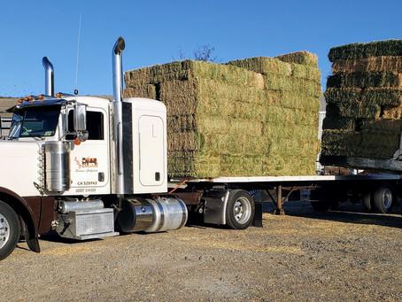 Vin Verified As Hay Unloaded