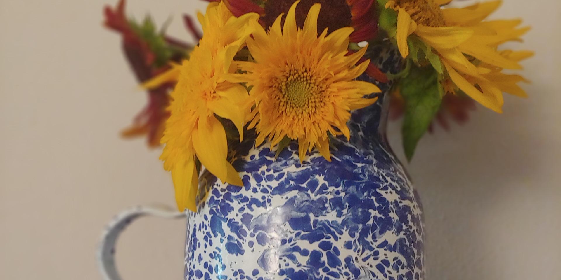 Sunflower August.jpg