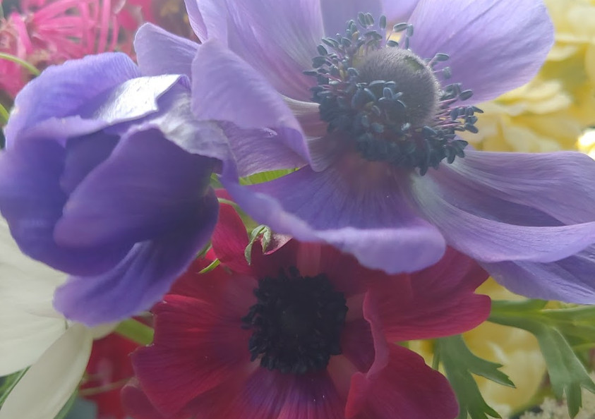 Spring Mix1.jpg