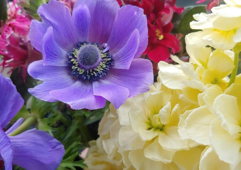 Spring Mix2.jpg