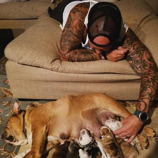 PJBulldogs_Family.JPG