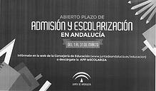 admisión escalarización