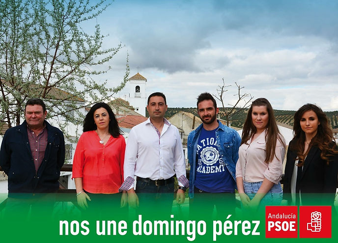 grupo psoe Domingo Pérez de Granada