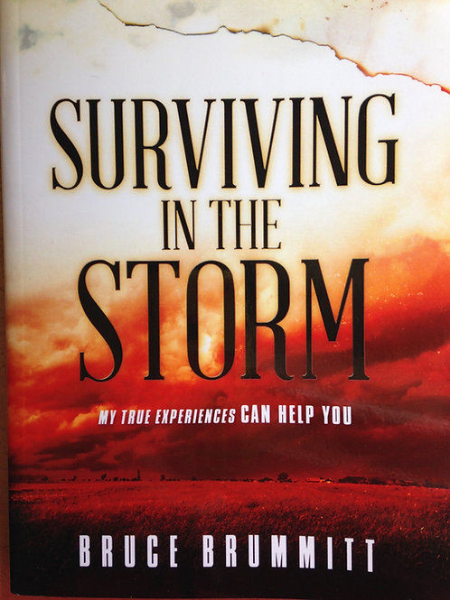 Surviving In The Storm   By Bruce Brummitt