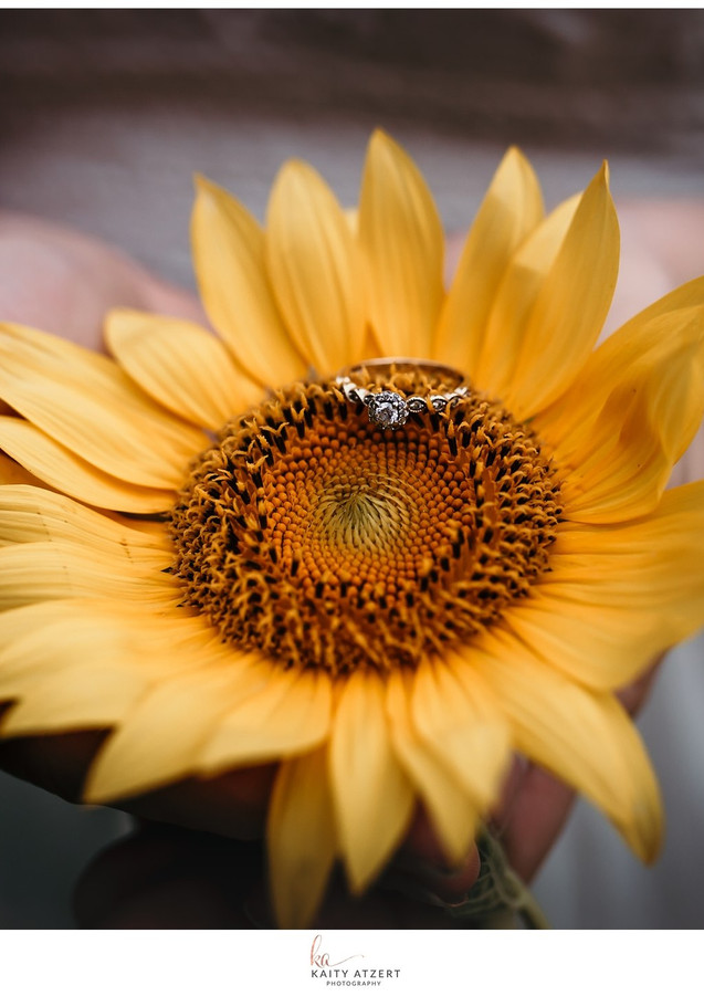 Engagement Session - Sunflower Field