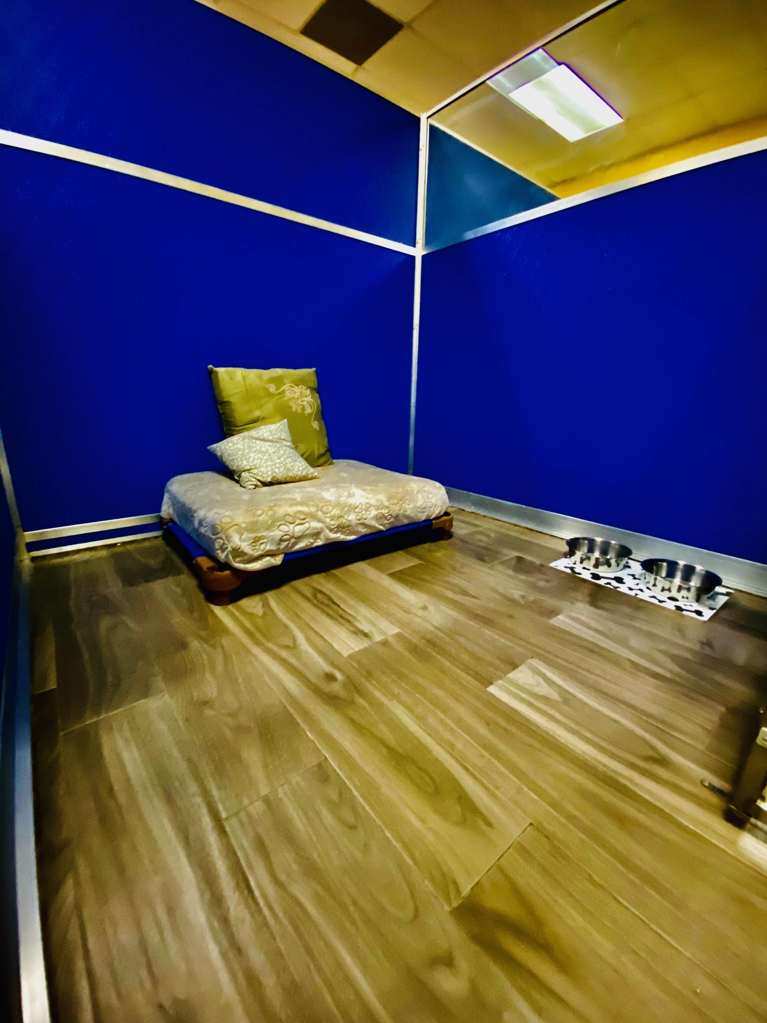 Suite Inside