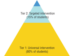 Interview | Response to Intervention (RtI) at School