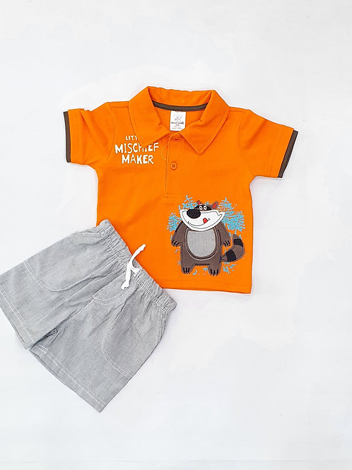 Toddlers Boys T. Shirt and H. Pants set