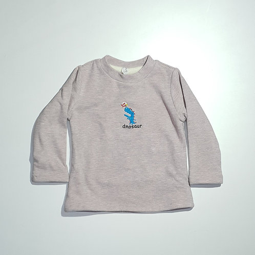 Boys Thick Full T.Shirt (With Inner Fur)