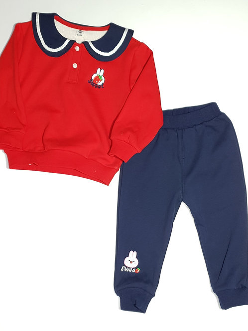 Girls Thick Track Suit Set (With Inner Fur)
