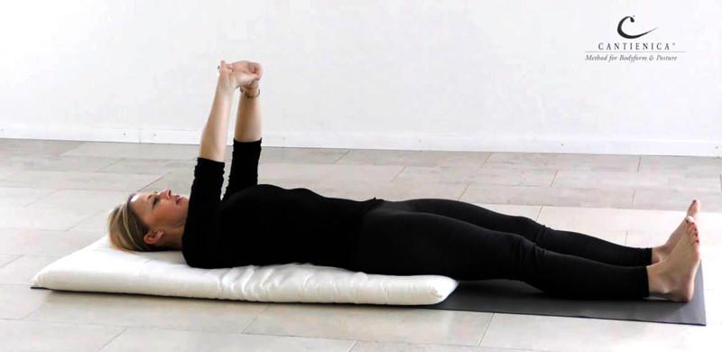 Das 6-wöchige Online-Training, moderiert von Andrea Alf.