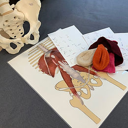 psoas-bebo-workshop.jpg