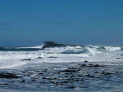 Goose Islans Surf