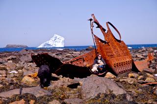 iceberg-Ferryland-shipwreckweb