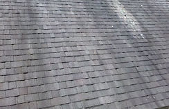 """<img src=""""eliteroofing.jpg"""" alt=""""fisher Indiana roofing company roofing mold removal""""/>"""