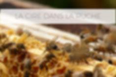 cire ruche.jpg