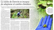 Cambio climático y el futuro de las ranitas de Darwin