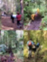 Fig 1 exclosure installation.jpg