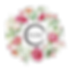 Logo circular sem fundo.png
