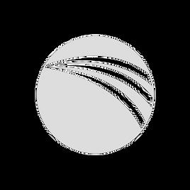 White Transparent DSS Logo.png
