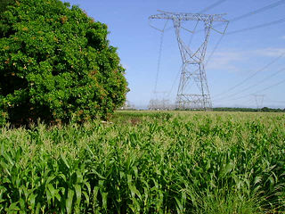 Linhas de transmissão - engenharia elétrica