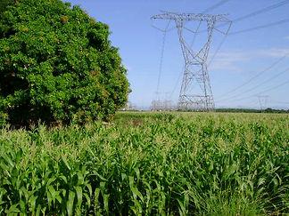transmisstion lines - electrical engineering
