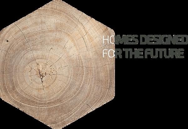 home-designed-for-the-future-photo-en.pn
