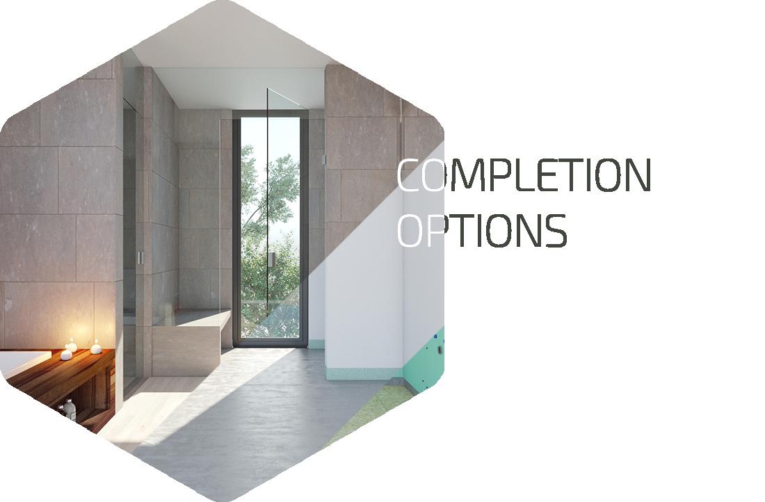 homepage-st-completion-options-en