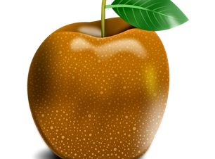 apple-1987123_1920.png