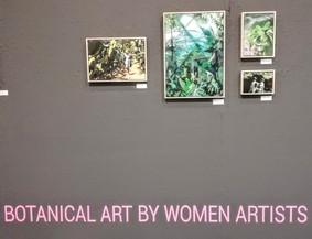 Marli Steyl Art Botanica II art.b