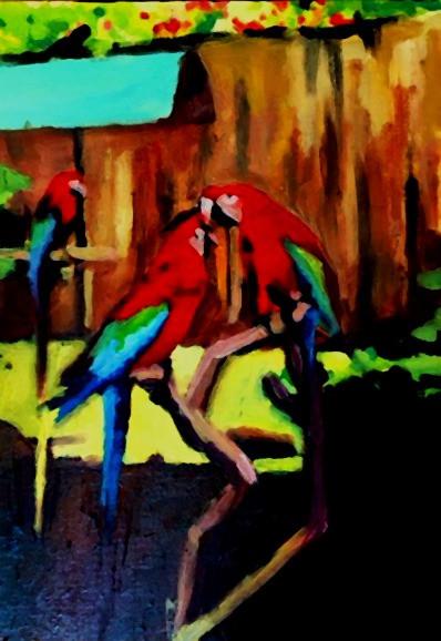 Macaws, Sat, Oct 3, 1992