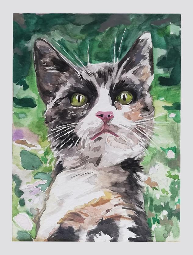 Odette kattie painting.jpg