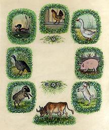 Yuri Vasnetsov illustrations Farm Animal