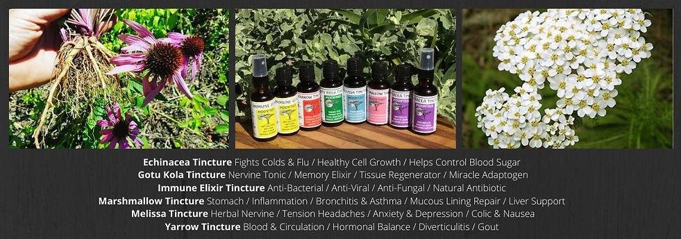 Moontree Organics Herbal Tinctures-KZN S