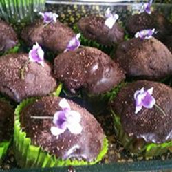 plant based baking_n
