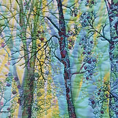 Birches Dance - close up