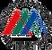 naist_logo.png