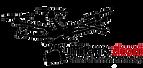 Logo Milano Droni.png