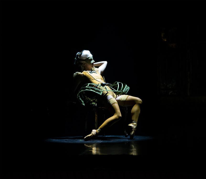 northern dancer as a courtesan in casano