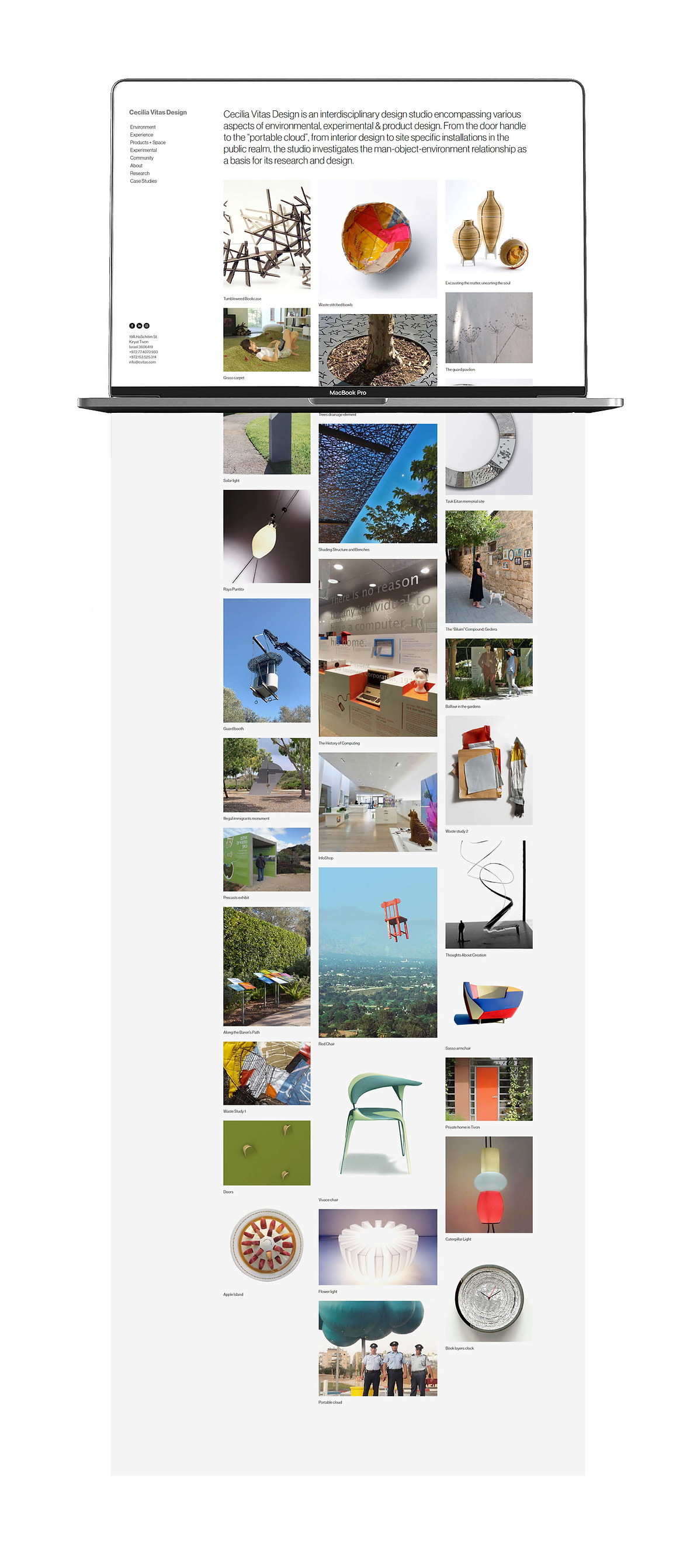 Cecilia Vitas  Website 1 small.jpg