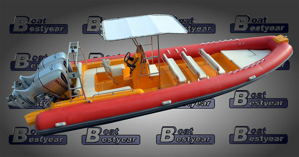 Rigid Inflatable Boat (RIB) 850
