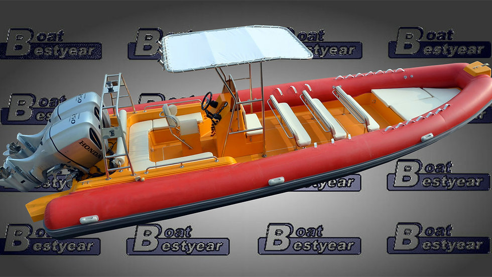 Rigid Inflatable Boat (RIB) 850