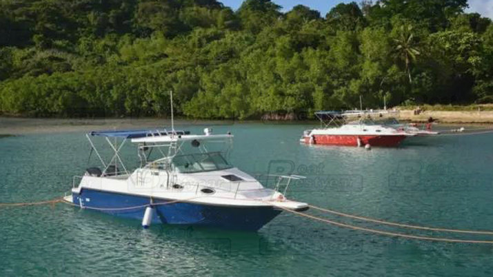 31ft Passenger Sightseeing Fishing Yacht