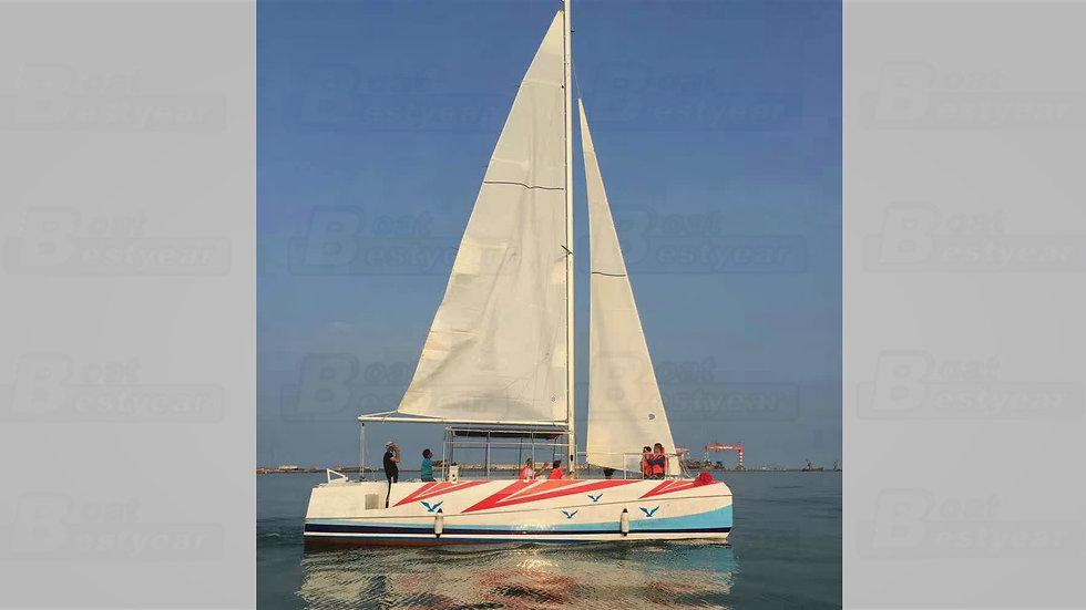 S33 Catamaran Sailboat for Transportation
