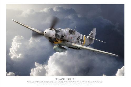 Messerschmitt Bf 109G-14 - Black Tulip