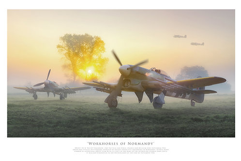 Workhorses of Normandy