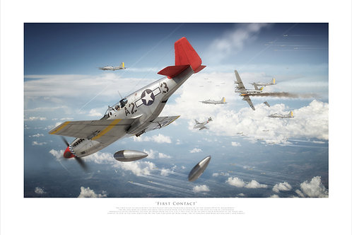 P51B Mustang - First Contact