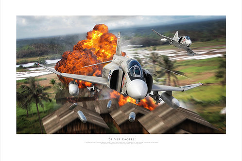 F4 Phantom - Silver Eagles