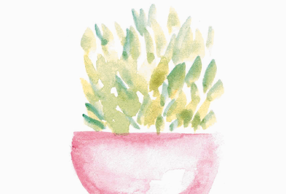 Potted Plants | Watercolor Prints