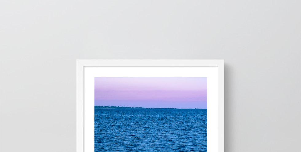 Purple Skies